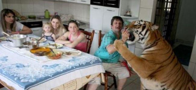 Brezilya'da Akıl Almaz Olay!