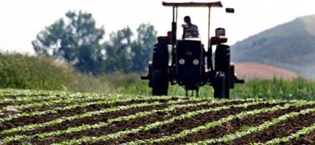 Photo of DÜÇ'e ait tarımsal arazilerin kiralanması için başvurular başladı