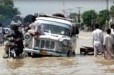 Hindistan'da olumsuz hava koşulları öldürüyor!