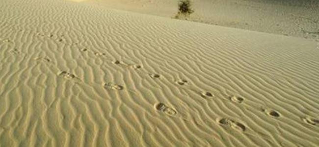 Bu kez Sahra çölünde öldüler