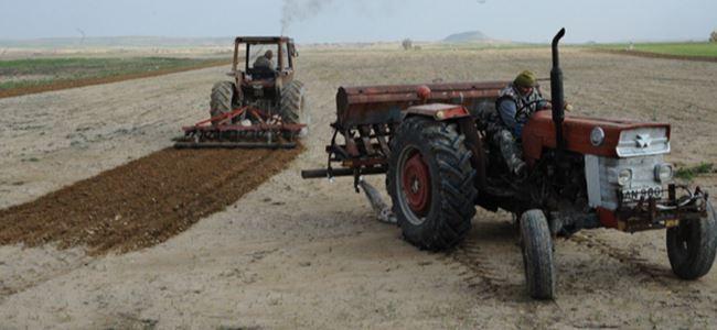 Çiftçiye çürük tohum şoku!