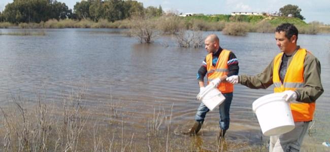 Göletler ve sulak alanlarda ilaçlama