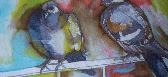 Güvercinler çarşamba sergilenecek
