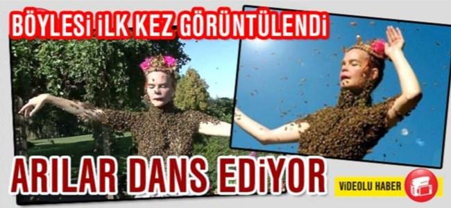 12 bin arı ile dans ediyor