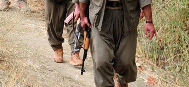 Almanya'dan flaş PKK kararı