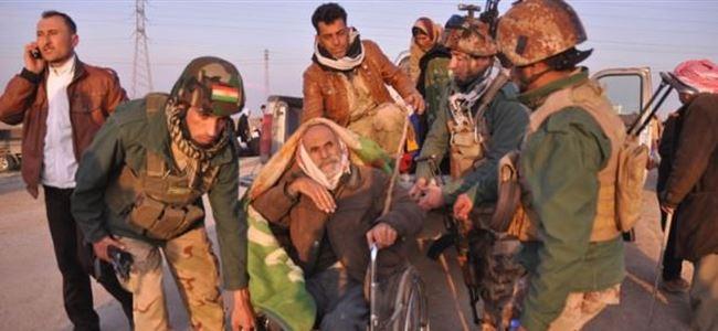 IŞİD 198 Ezidi'yi serbest bıraktı