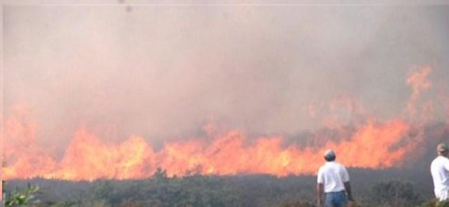 Geçitkale'de Arazi Yangını…