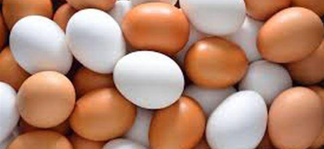 Photo of Kaynamış yumurta eski haline nasıl döner?