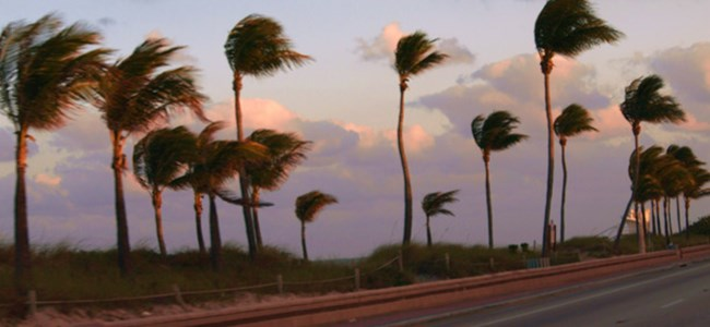 Cuma'ya kadar şiddetli rüzgar