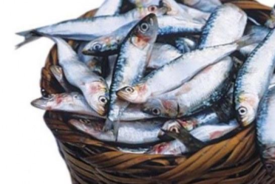 Balık tüketmeniz için 5 önemli neden