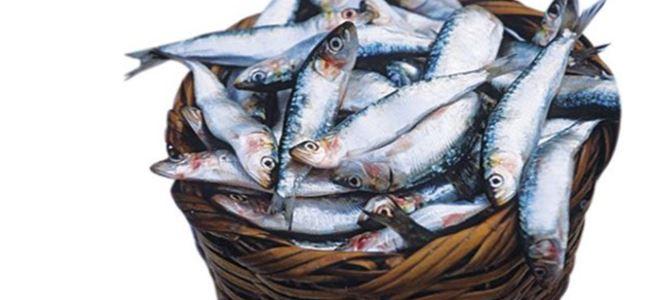 Balık eti kadar faydalı kırmızı et
