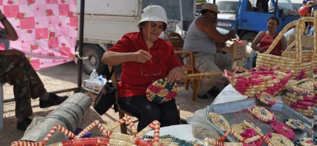 Düzova'da kültür şenliği vardı