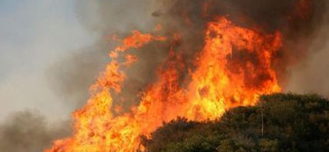 Soli harebeleri'nde büyük yangın!
