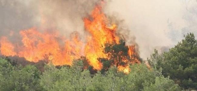 Larnaka'da Yangın Çıktı