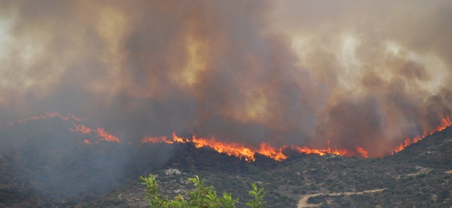 Larnaka'daki Yangın Kontrol Altında