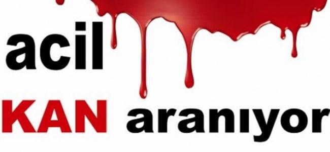 A RH + ve A RH – Kan Aranıyor