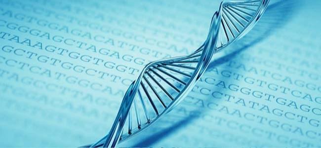 Arjantin, Tecavüzcülerin DNA'sını Kayıt Altına Alacak