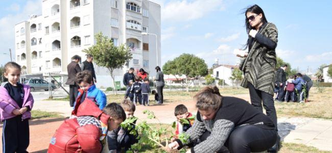 Birikim Anaokulu öğrencileri Dr. Küçük Parkı'na fidan dikti
