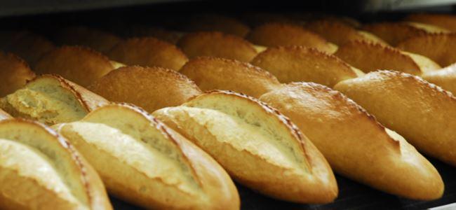 Ekmek küfü meğer pil ömrünü artırıyormuş!