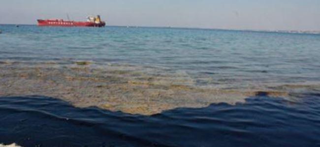 Siber: Kalecik dışındaki sahiller temiz