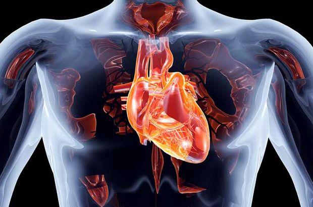 Photo of Aort damarı neden ve nasıl yırtılır?