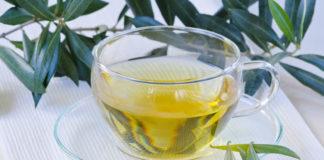 Zeytin Yaprağı Çayı Nasıl Hazırlanır? Faydaları ve Zararları