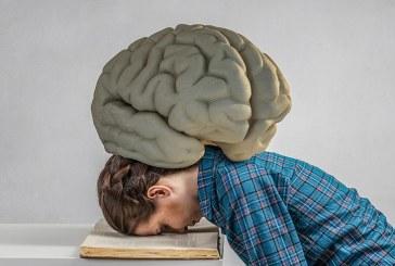 Beyin yorgunluğuna iyi gelen besinler