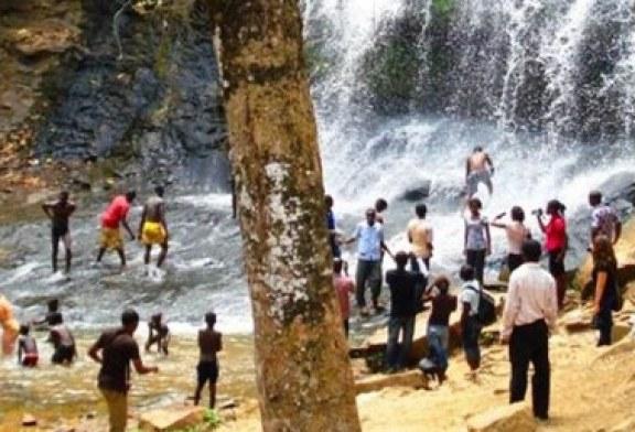 Gana'da öğrencilerin üzerine ağaç düştü: 20 ölü