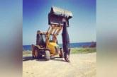 Dev yunus Çatalköy'de sahile vurdu