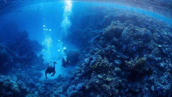 Photo of Atlas Okyanusu'nun içindeki bir dağda define keşfedildi