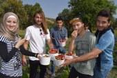 UFÜ portakal ve çilek şenliği gerçekleştirildi