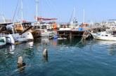 TDP, Mağusa Limanı'ndaki sorunlara dikkat çekti