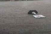 Mağusa'da yağmur yol kapattırdı