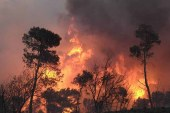 Demir: Yangına neden olacak davranışlardan kaçının