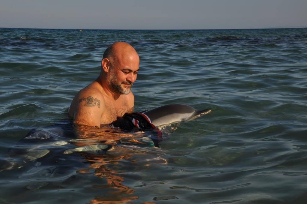 Photo of İskele'de yavru yunus kurtarıldı