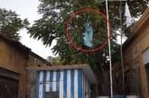 Yunan Bayrağı'nı indirip 'Birleşik Kıbrıs' pankartı astılar
