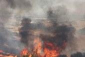 Alevler 20 hektarı küle çevirdi