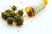 Tıbbi Marihuana – Cannabis