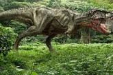 Dinozor soy ağacının 'geçiş türü' bulundu