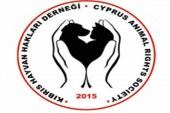 Kıbrıs Hayvan Hakları Derneği:  Mehmetçik Belediyesi'nden bilgi talep ediyoruz
