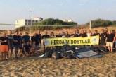 Gazimağusa'da Kum Zambaklarının yaşam alanı olan sahil temizlendi