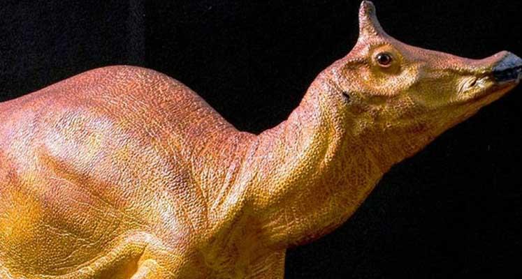 California 'Resmi Dinozoru'na kavuştu