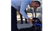 'Ledra' artık güvende