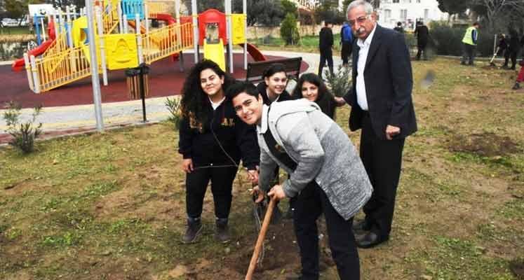 girne-belediyesi-ağaçlandırma