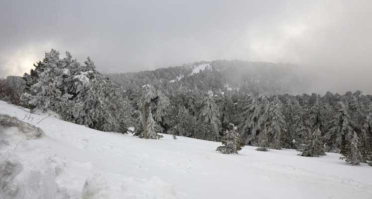 Photo of Bu gece kar yağışı bekleniyor