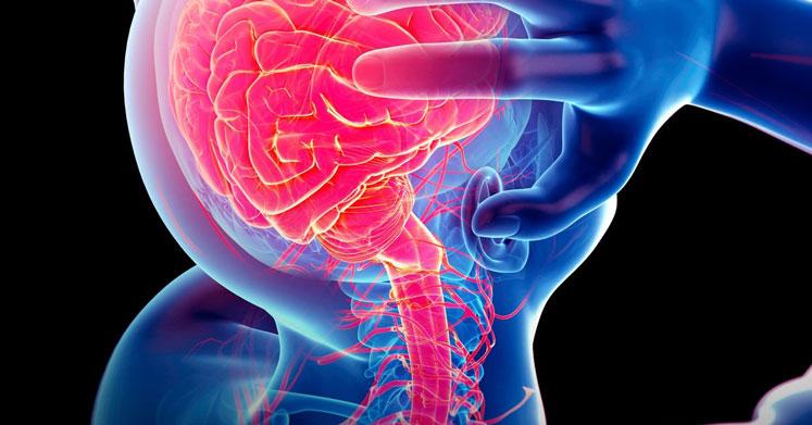 Photo of Epilepsi Nedir? Epilepsi İle Başa Çıkmanın 10 Doğal Yolu