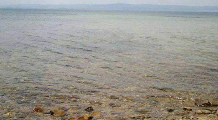 ceset-sahil
