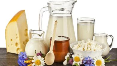 Kalsiyum Eksikliği ve Faydaları | Kalsiyum İçeren En İyi 10 Gıda