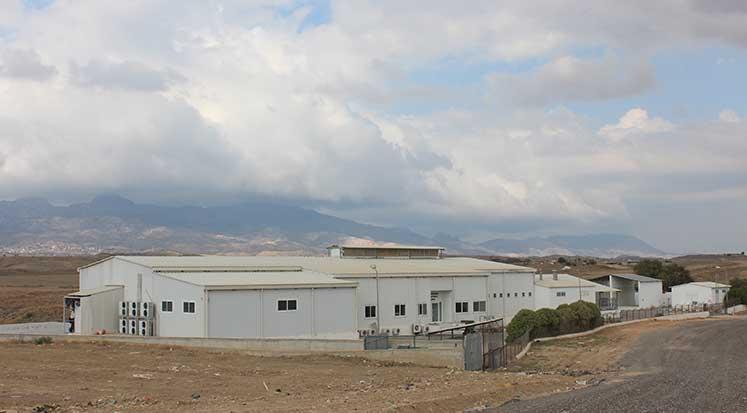 Photo of Kangrene neşter