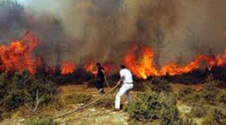 Photo of Güney'de büyük yangın